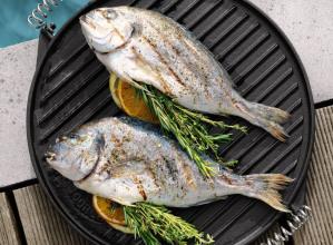 Gietijzeren grillplaten voor BBQ, oven en fornuis